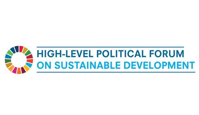 La Campaña Mundial de Educación organiza reunión virtual durante HLPF 2021